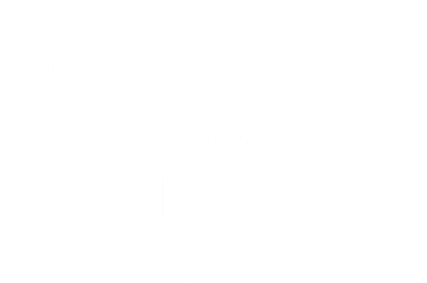 My Bees Home